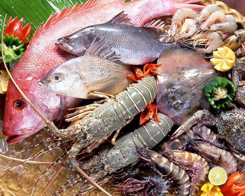 Os peixes que têm maior concentração de mercúrio são os que estão no final da cadeia alimentar, como o tubarão, peixe espada e agulha, e não é recomendável consumi-los mais do que duas vezes ao mês.